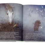 """Книга """"Ежик в тумане"""", 2014г."""